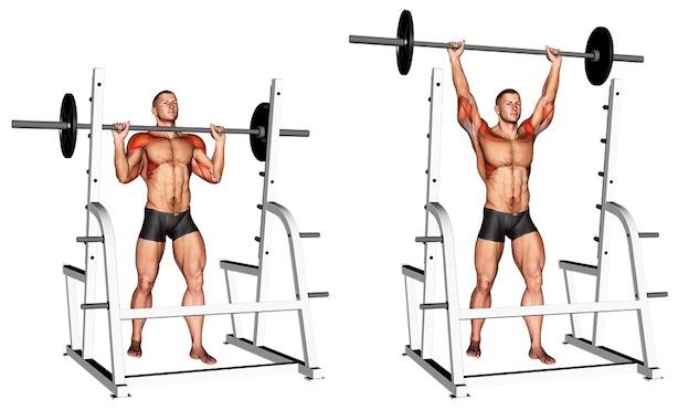 Foto von der Übung Schulterdrücken Langhantelstehend vor Kopf.