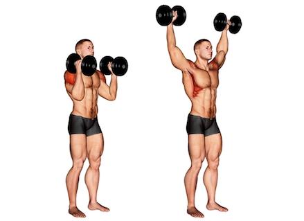 Foto von der Übung Schulterdrücken mit Kurzhanteln gedreht stehend.