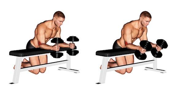 Unterarmtraining Kurzhantel: Foto von der Übung Unterarm Curls Hammergriff.