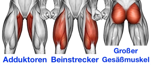 Foto von den seitlicher Ausfallschritt Muskeln Adduktoren, Beinstrecker und großer Gesäßmuskel.
