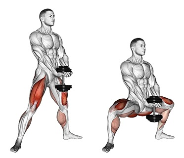 Oberschenkelinnenseite trainieren: Foto von der Übung Sumo Kniebeuge Kurzhantel.
