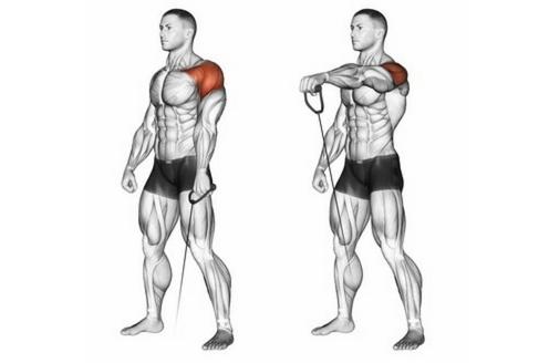 Schulterübungen Kabelzug: Foto von der Übung Frontheben am Kabelzug einarmig.