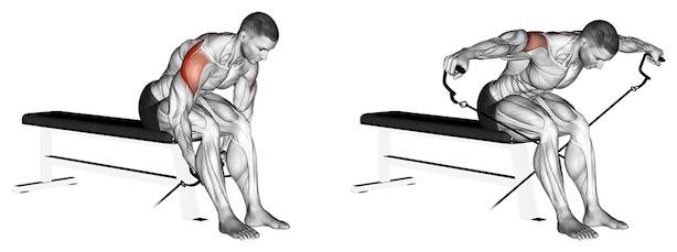 Schulterübungen Kabelzug: Foto von der Übung Seitheben vorgebeugt Kabelzug sitzend.