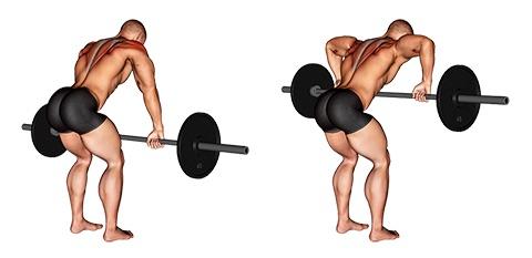 Hintere Schulter trainieren: Foto von der ÜbungVorgebeugtes Langhantelrudern zur Brust.