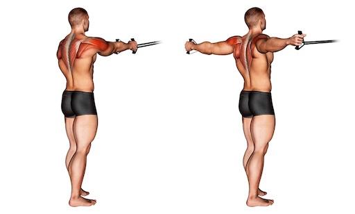 Hintere Schulter Übungen: Foto von der Übung Butterfly Reverse Kabelzug stehend.