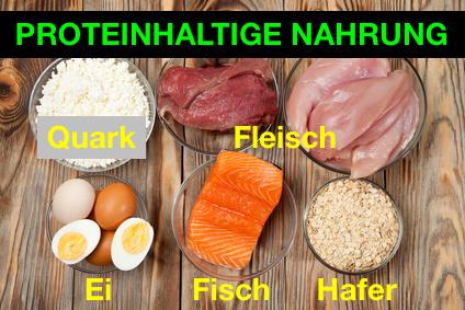 Proteinhaltige Nahrung: Foto von den eiweißhaltigen Nahrungsmitteln Magerquark, rotes und weißes mageres Fleisch, Eier, Fisch und Hafer.