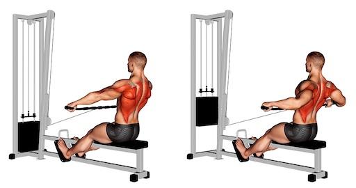 Foto von der Übung Ruderzug Kabelzug breiter Griff.
