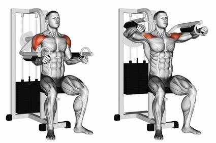 Seitliche Schulter trainieren:Foto von der Übung Seitheben Maschine.