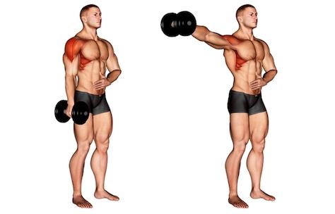 Seitliche Schulter Übungen: Foto von der Übung Seitheben mit Kurzhanteln einarmig.