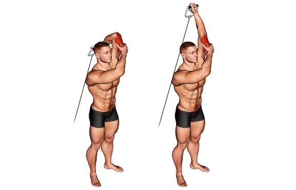 Foto von der Übung Trizepsdrücken am Kabelzug einarmig über Kopf.