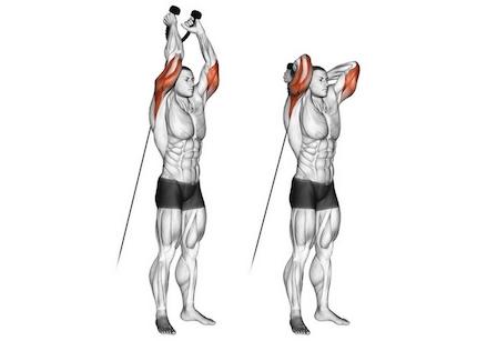 Foto von der Übung Trizepsdrücken am Kabelzug über Kopf.