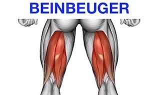 Hintere Oberschenkelmuskulatur: Foto von dem Beinbizeps Muskel.