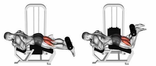 Hintere Oberschenkelmuskulatur: Foto von der Übung Beinbizeps Maschine liegend.