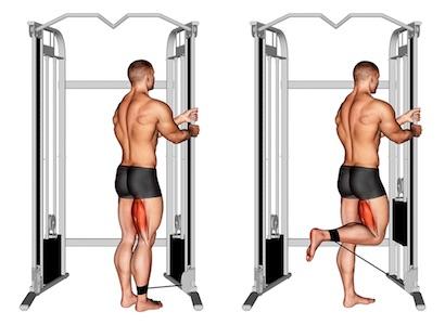 Hintere Oberschenkelmuskulatur: Foto von der Übung Beinbizeps trainieren am Kabelzug.