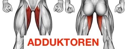 Foto vom Innenschenkel Muskel Adduktoren.