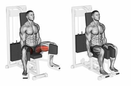 Innenschenkel trainieren: Foto von der ÜbungAdduktorenmaschine sitzend.