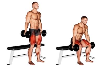 Kniebeugen Ausführung: Foto von der Übung Box Kniebeugen mit Kurzhanteln.