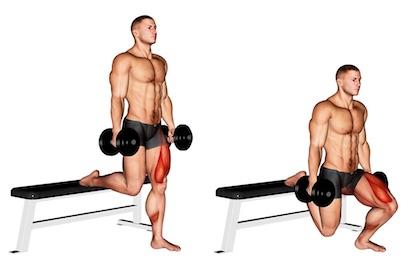 Kniebeugen Ausführung: Foto von der Übung EinbeinigeKniebeuge mitKurzhanteln.