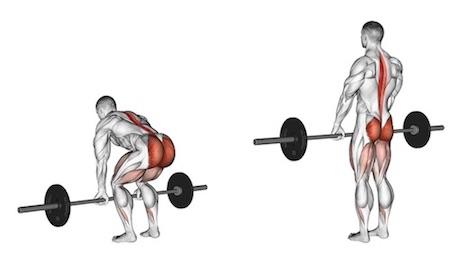 Kreuzheben Muskeln: Foto von der ÜbungKreuzheben mitLanghantel.