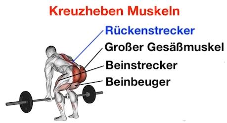 Foto von den Kreuzheben Muskeln.