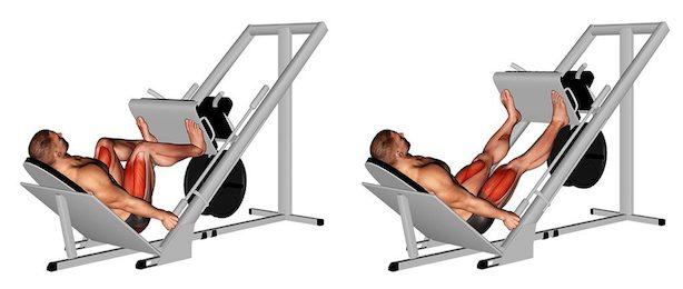 Beinpresse Muskeln: Foto von der Übung Breite Beinpresse 45 Grad.