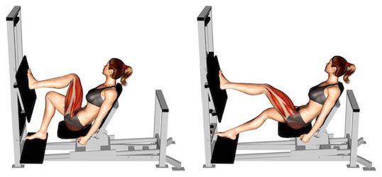 Beinpresse Muskeln: Foto von der Übung Einbeinige Beinpresse horitontal.