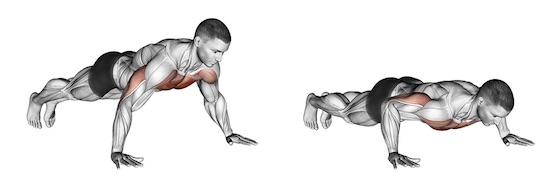 Liegestütze Muskelaufbau: Foto von der Übung Liegestütze klassisch.