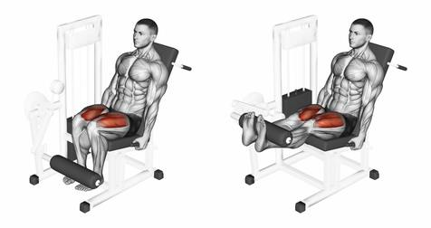 Quadriceps Übungen: Foto von der ÜbungBeinstrecker Maschine.