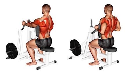 Rudern Muskeln: Foto von der Übung Rudern Maschine enger Griff.