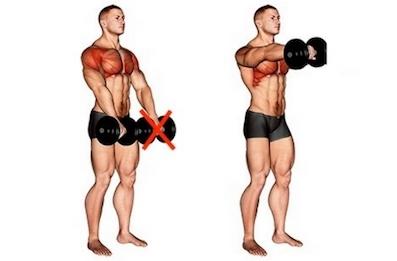 Schulter Muskelaufbau: Foto von der ÜbungKurzhantel Frontheben.