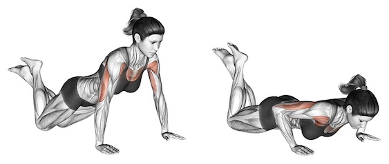 Brusttraining ohne Geräte: Foto von der Übung Breite Frauenliegestütze.