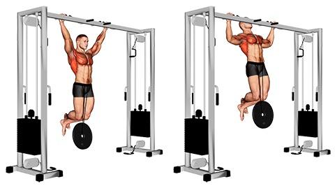 Klimmzüge Muskelgruppen: Foto von der Übung Breite Klimmzüge ZusatzgewichtObergriff.
