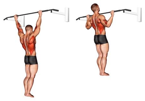 Übungen ohne Geräte: Foto von der Übung Breiter Klimmzug.
