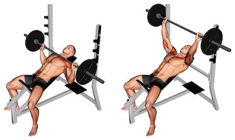 Obere Brust trainieren: Foto von der ÜbungSchrägbankdrücken mitLanghantel.