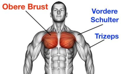 Foto von dem obere Brustmuskeln trainieren.