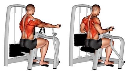 Rückenmuskulatur stärken: Foto von der Übung Rudermaschine breiter Untergriff.