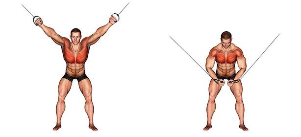 Kabelzug Brust: Foto von der Übung Flys von oben.