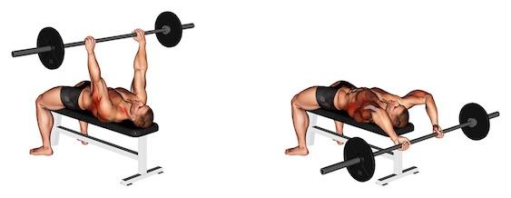 Sägezahnmuskel trainieren: Foto von der Übung Langhantel Überzüge.