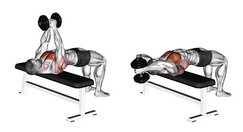 Sägezahnmuskel trainieren: Foto von der Übung ÜberzügeKurzhantel Hammer Griff.