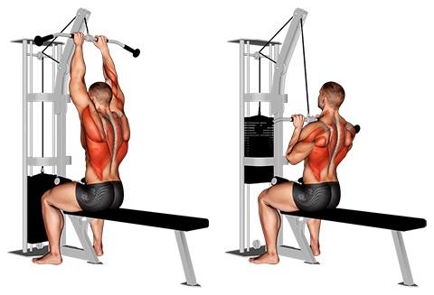 Latzug Muskeln: Foto von der Übung Latziehen eng zur Brust.