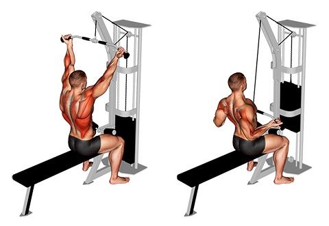 Latzug Rücken:Foto von der Übung LatzugKabelzugUntergriff.