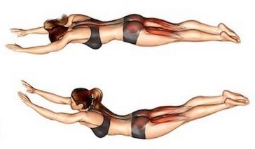Muskeln aufbauen zuhause ohne Geräte: Foto von der Übung Rückenstrecken liegend.