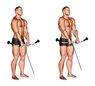 Nacken Übungen Muskelaufbau:Foto von der Übung Nackenziehen am Kabelzug.