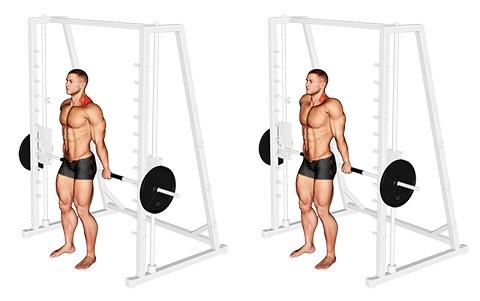Nacken Übungen Muskelaufbau:Foto von der Übung NackenziehenLanghantelMultipresse.