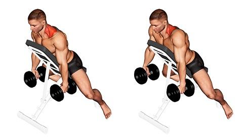 Nackenübungen Bodybuilding:Foto von der Übung NackenhebenKurzhantel Brustlehne.