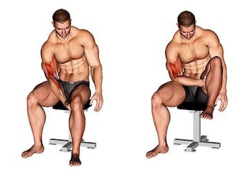 Trainingsplan Muskelaufbau zuhause ohne Geräte: Foto von der Bizeps Eigengewichtsübung.
