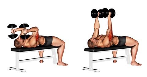 Foto von der French Press Bodybuilding Übung mit2 Kurzhanteln.