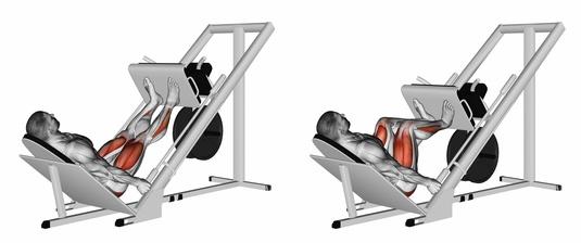 Beinmuskeltraining Geräte:Foto von der Übung Beinpresse 45 Grad.