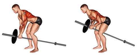Kapuzenmuskel trainieren:Foto von der Übung T BarRudern.