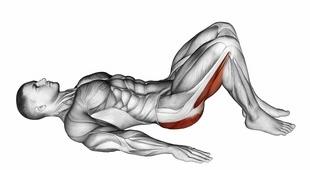 Rückenübungen Muskelaufbau ohne Geräte: Foto von der Übung Beckenheben fürAnfänger.